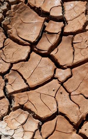 dry-clay-soil-lg